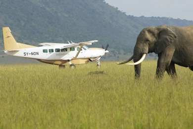 Amboseli Flying Safari